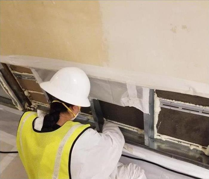 worker removing mold from wall