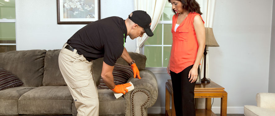 Culver City, CA carpet upholstery cleaning